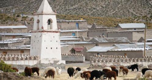 Arica implementará paneles solares en sus viviendas